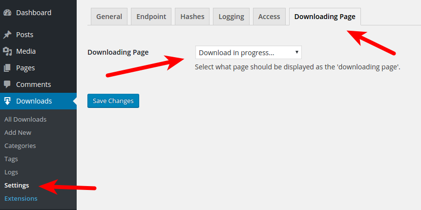 Set the newly created Downloading Page in your Download Monitor settings